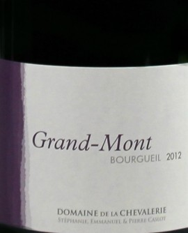 Bourgueil Grand-mont 2012 Caslot