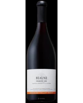 Beaune 1er Cru 2016 TOLLOT-BEAUT