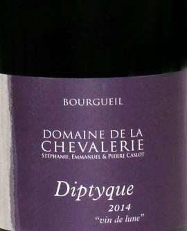 Bourgueil Dyptique 2014 Caslot