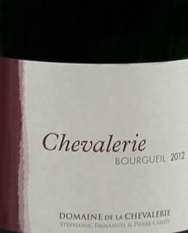 Bourgueil Chevalerie 2012 Caslot