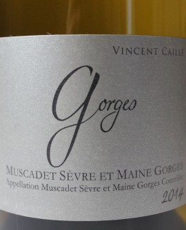 Vincent Caillé 2014 Gorges