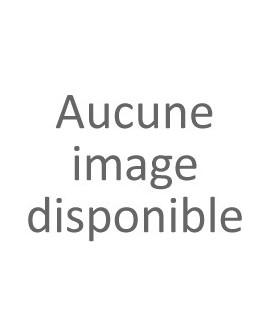 Sancerre Les Caillottes 2014 François Cotat
